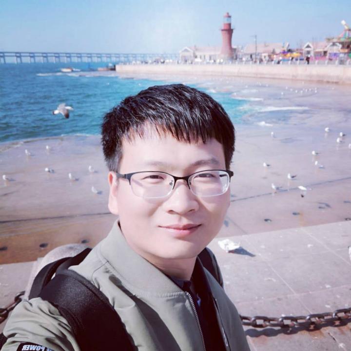 Chenyang Si